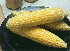 Incredible Sweet Corn Image