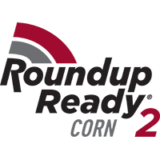 SB-55R95 Roundup Ready® 2 Corn